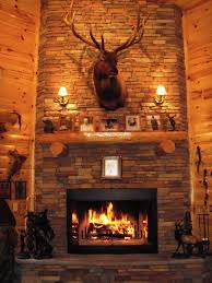decoration dazzling log cabin fireplace tools with glass panel door for gas fireplaces inserts and stacked