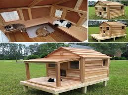 outdoor cat house plans diy beautiful outdoor cat house plans building an insulated cat house outdoor