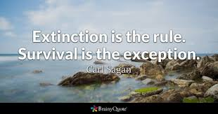 Survival Quotes Custom Survival Quotes BrainyQuote