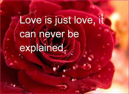 best love wallpaper with lovely quotes. Simple Best Best Love Wallpaper With Lovely Quotes Hd Inside