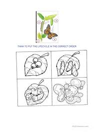 Free Worksheets » Caterpillar Life Cycle Worksheet - Free Math ...