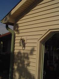 garage door and light box trim finish
