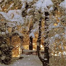 Pin by Priscilla Gallagher on Holidays & Events | Winter pictures, Winter  scenery, Winter scenes