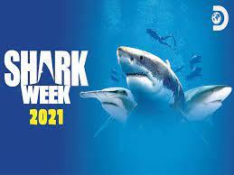 Amazon.de: Shark Week 2020 - Season 1 ...
