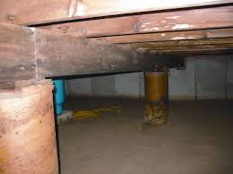 mold and rot thriving in a dirt floor crawl e in charleston west virginia