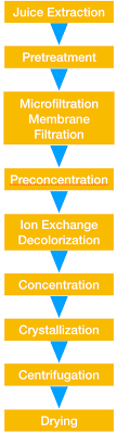 Sugar Production Flow Chart Sugar Decolorization Using Ion Exchange Resin In The
