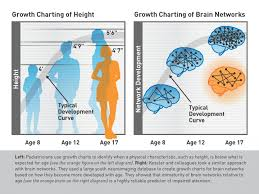 New Who Growth Chart Could A Brain Growth Chart Spot Attention Problems Early