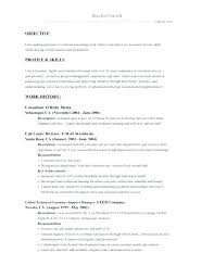 Project Management Resume Objective Resume Objectives For Management