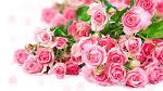 Pink Flower Bouquet...