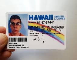 From Fake Fogels Superbad Movie Id Joke Mclovin