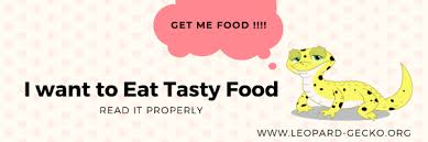 Leopard Gecko Food Complete Review Guide 2020