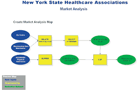 1 Health Care Management Organizations Divvy Up Territories