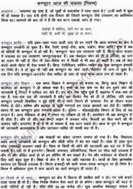 Computer Essay In Hindi Language