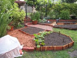Small Picture My backyard vegetable garden Outdoor furniture Design and Ideas