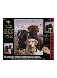 Shop Plaid Plaid Paint By Number Proud Labs Painting Craft