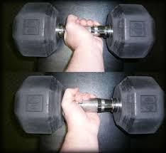 5 tips for bigger biceps arnold