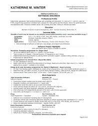 Resume Format Google Template Google Docs Cv Template Resume Format Luxury Simple