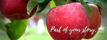 apple food. michigan apples - 1,612 photos 44 reviews food \u0026 beverage company lansing, 48906 apple
