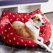 tj maxx dog beds. Exellent Maxx Image May Contain Dog In Tj Maxx Dog Beds