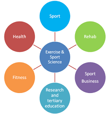 Careers With Exercise Science Degree Online Bachelor Degree Kinesiology Online Collages Mba