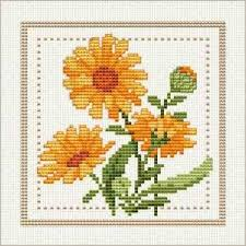 Free Cross Stitch Chart Flower Of The Month Includes Other