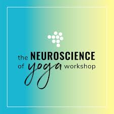the neuroscience of yoga