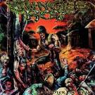 Slaughter the Weak album by Jungle Rot
