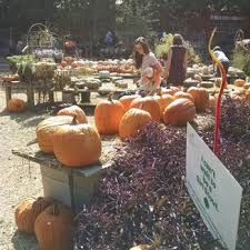 photo of the good earth garden center little rock ar united states