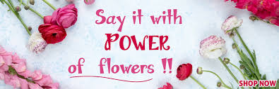 fresh flowers are perfect gifts for all occasions