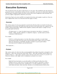Executive Summary Templates Executive Summary Template Doc Typical 24 Financial Statement 13