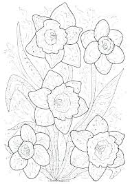 Free Spring Coloring Pages To Print Springtime Coloring Pictures