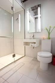 Small Modern Bathroom Designs Wonderful 25 Best Ideas About Small Bathrooms  On Pinterest 22