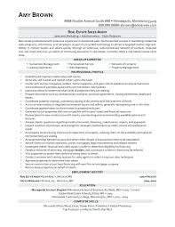 Sample Resume Of Sales Manager In Real Estate Best Resume Resume For