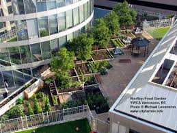 Rooftop Kitchen Garden Small Space City Farmer News