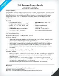 sharepoint developer resume developer resume examples top 8 database developer resume samples in