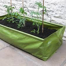 garden planters. Haxnicks\u0027 Cane Supports For Garden Planters