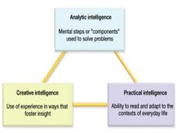 Sternberg Intelligence Cognitiveclass Licensed For Non Commercial Use Only