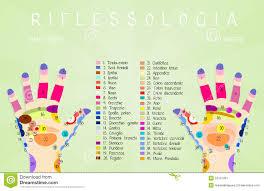Reflexology Hand Chart Stock Illustration Illustration Of