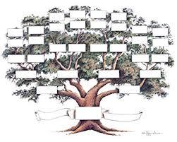Amazon Com Family Tree Chart Posters Prints