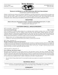 Sample Of International Resume Best Photos Of Business Sales Resume Examples Business Development 19