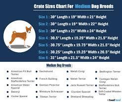 Dog Cage Size Chart 32 Expository Dog Crate Sizes