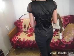 dog-sex Videos / ZooXhamster.com
