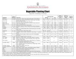 Free Vegetable Garden Planner Design Your Vegetable Garden