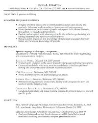 Example Of An Excellent Resume Excellent Resume Templates Samples