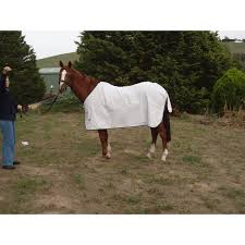white poly horse rug