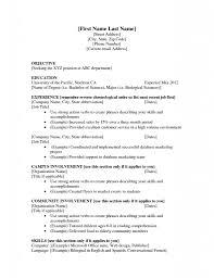 High School Resume Examples No Experience Svoboda2 Com For 21