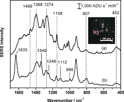 Surface-Enhanced Raman Spectroscopy: A <b>Direct</b> Method to Identify ...