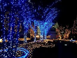 christmas lighting ideas. Outdoor Christmas Lights Ideas Trees Lighting
