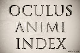 Quote Spy Beauteous Latin Quote Oculus Animi Index On Stone Background 48d
