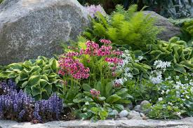 Small Picture Garden Ideas Border ideas Perennial Planting Perennial